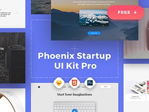 graphicburger-thumb-Phoenix-Startup